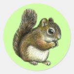 Baby squirrel round sticker