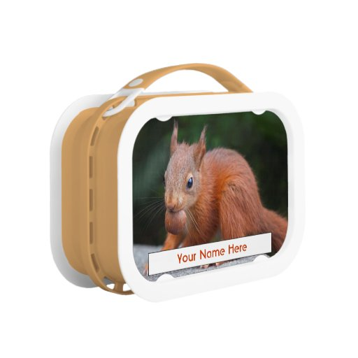 Baby Squirrel with Nut Personalised Lunchbox