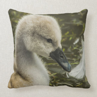 Baby Swan And Feather Throw Pillow