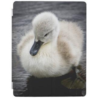 Baby Swan (Cygnet ) iPad Cover