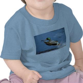 Baby T / Mallard Duck T-shirts