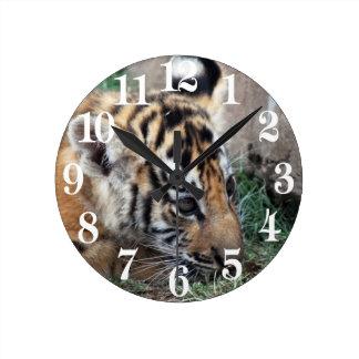 Baby Tiger cub lying down Round Clock