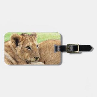 Baby Tiger custom luggage tag