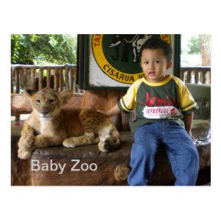 Baby tiger post card