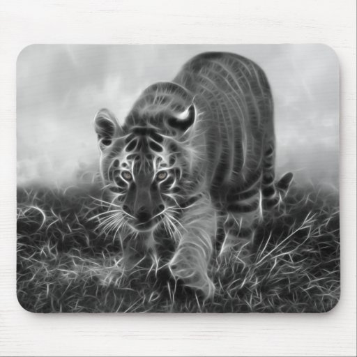 Baby Tiger stalking in Black and white Mouse Pads