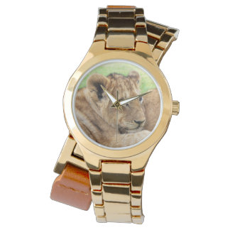 Baby Tiger watches