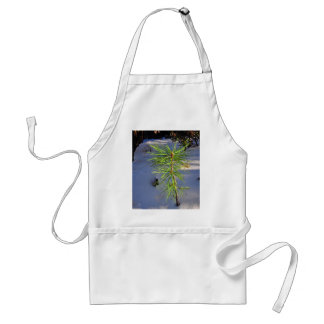 Baby tree in snow aprons