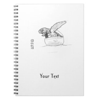 Baby Turtle Drawing Notebook