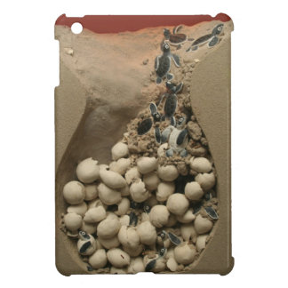 Baby Turtle Eggs Hatching Case For The iPad Mini