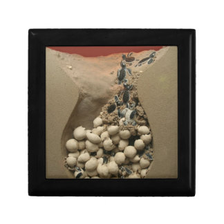 Baby Turtle Eggs Hatching Gift Box