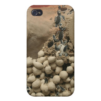 Baby Turtle Eggs Hatching iPhone 4 Cover