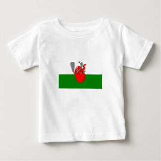 Baby Wales Baby T-Shirt