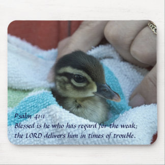 Baby Wood Duck Mouse Mat