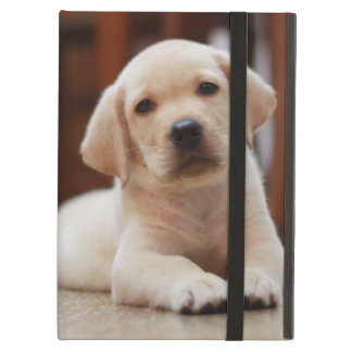 Baby Yellow Labrador Puppy Dog laying on Belly iPad Air Cover