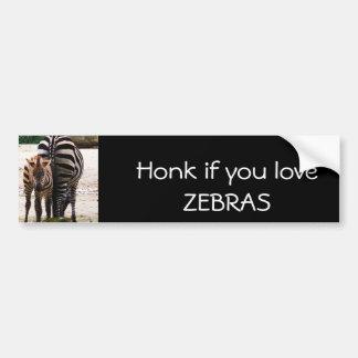 Baby Zebra Bumper Sticker