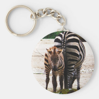 Baby Zebra Key Ring
