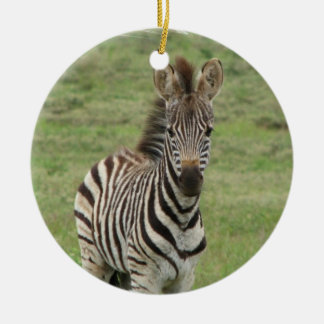 Baby Zebra Ornament
