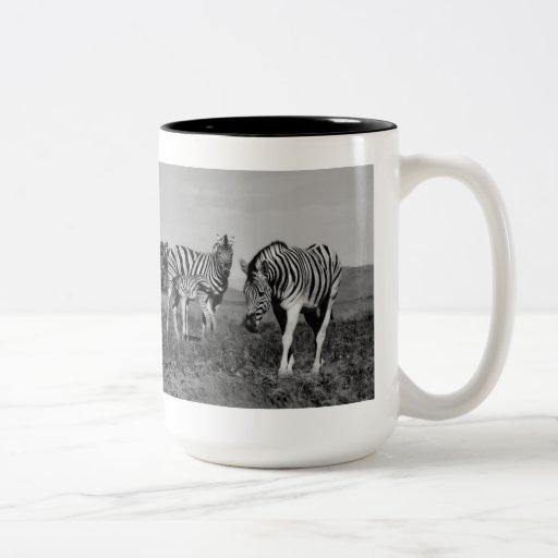 Baby zebra suckling coffee mug