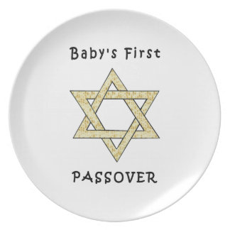 Baby's First Passover Plates