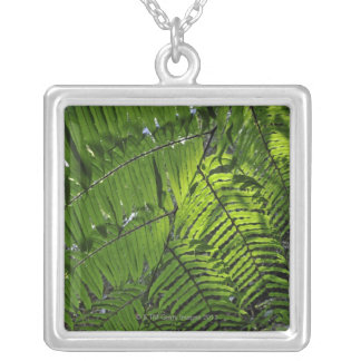 Bach Ma National Park Silver Plated Necklace