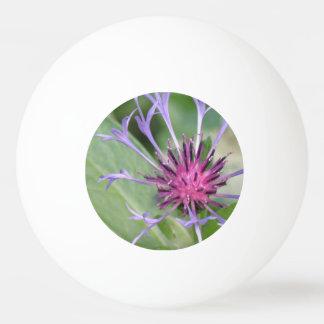 Bachelor Button Flower Blossoms Ping Pong Ball