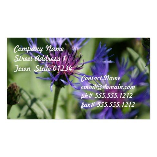 Bachelor Button Flower Business Card