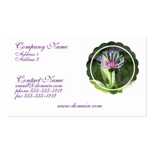 Bachelor Button Flower Photo Business Card