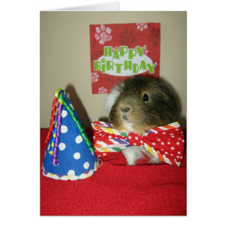 Baci's Birthday Party Greeting Card