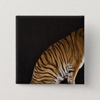 Back end of tiger sitting on platform 15 cm square badge