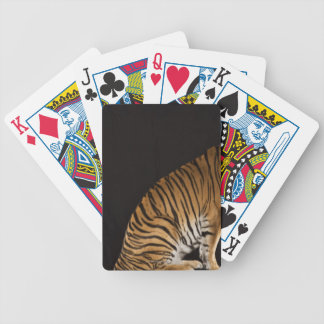 Back end of tiger sitting on platform bicycle playing cards