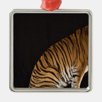 Back end of tiger sitting on platform christmas ornament