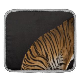 Back end of tiger sitting on platform iPad sleeve