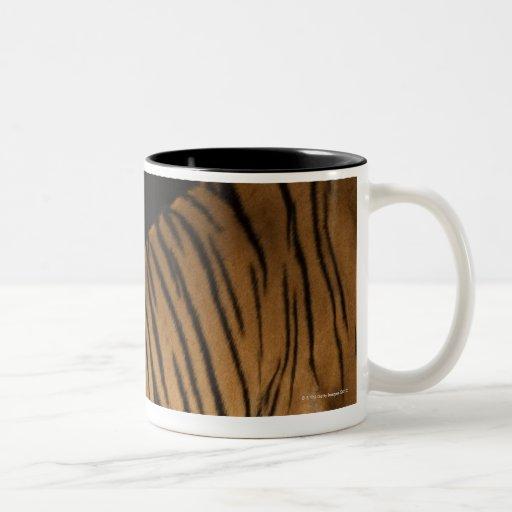 Back end of tiger sitting on platform coffee mugs