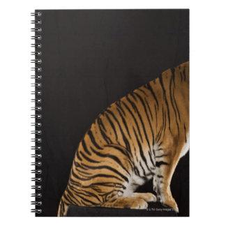 Back end of tiger sitting on platform notebook