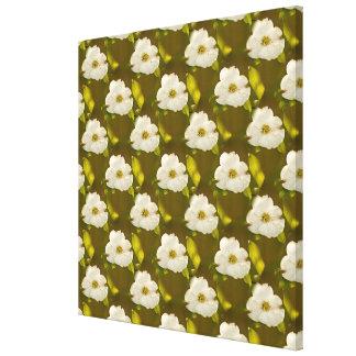 Back-lit Dogwood Blossom Wallpaper Canvas Print
