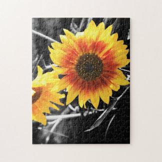 Back-lit Sunflower in B&W Jigsaw Puzzle