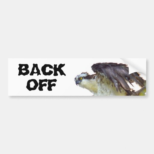 Back Off Frazzled Hawk Bumper Sticker