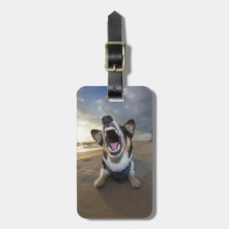 Back to School Luggage Tag
