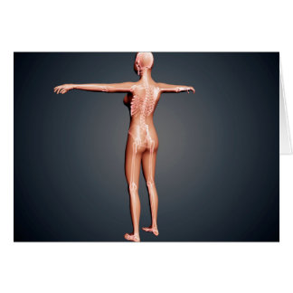 Back View Of Female Body With Skeletal System Card