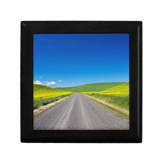 Backcountry road through Spring Canola Fields Small Square Gift Box