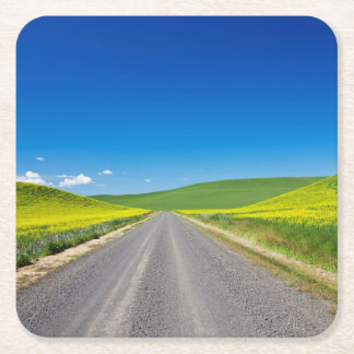 Backcountry road through Spring Canola Fields Square Paper Coaster