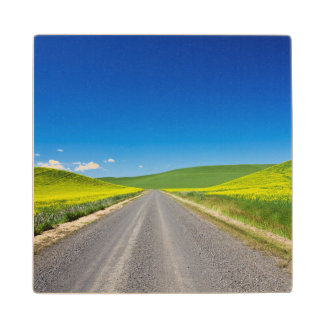 Backcountry road through Spring Canola Fields Wood Coaster