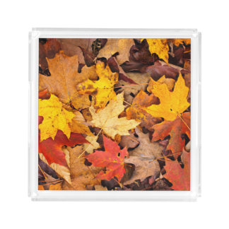 Background Of Colorful Autumn Leaves On Forest Acrylic Tray