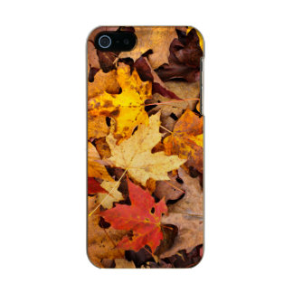 Background Of Colorful Autumn Leaves On Forest Incipio Feather® Shine iPhone 5 Case
