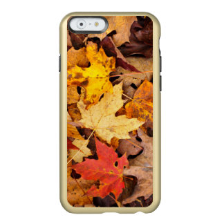 Background Of Colorful Autumn Leaves On Forest Incipio Feather® Shine iPhone 6 Case
