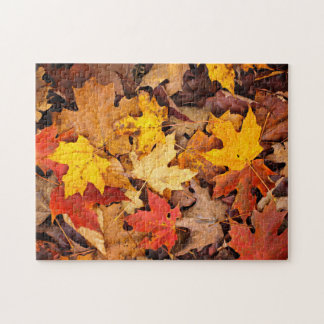 Background Of Colorful Autumn Leaves On Forest Jigsaw Puzzle
