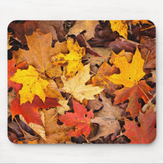 Background Of Colorful Autumn Leaves On Forest Mouse Mat