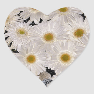 Background of daisy flowers heart sticker