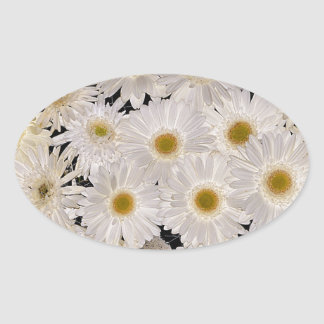Background of daisy flowers oval sticker