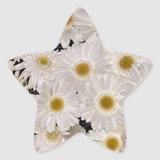 Background of daisy flowers star sticker